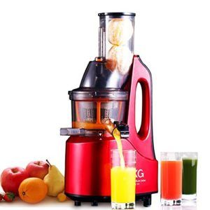 SKG Slow Juicer | Wide Chute Anti Oxidation Slow Masticating