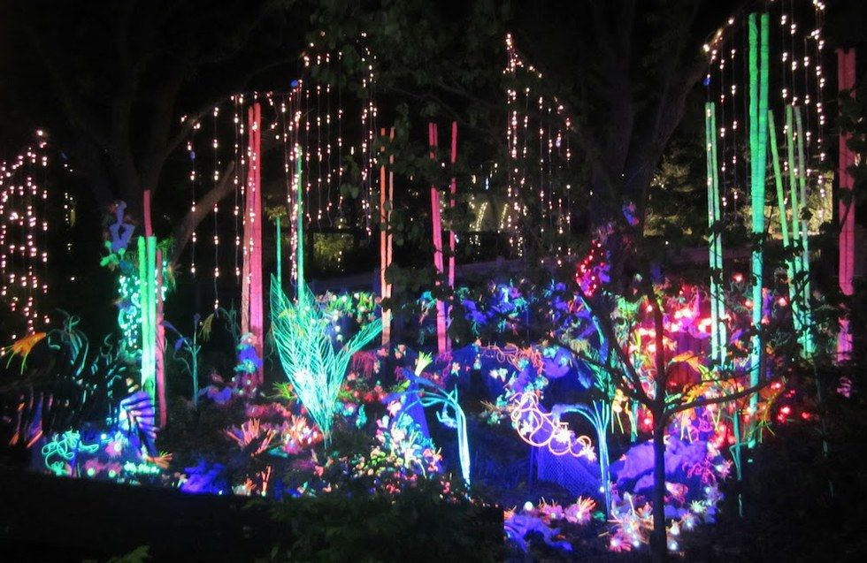 10 Things To Do Over Christmas Break In Texas Zoo Lights Houston Zoo Christmas Light Tour