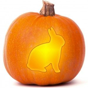 Rabbit Pumpkin Carving Templates Pinterest Pumpkin Carving