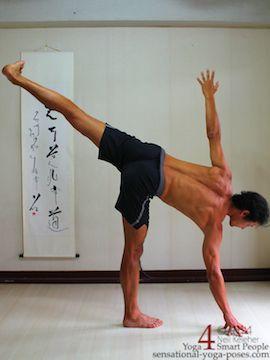 lower back stretches  yoga for flexibility easy yoga