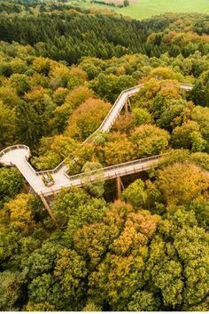 Tree top path nature adventure park Panarbora NRW -  No nature lover should miss a walk in the tree tops of North Rhine Westphalia. On the treetop path  - #adventure #BudgetTravel #CultureTravel #nature #NRW #panarbora #Park #path #RoadTrips #Top #TravelTips #Tree