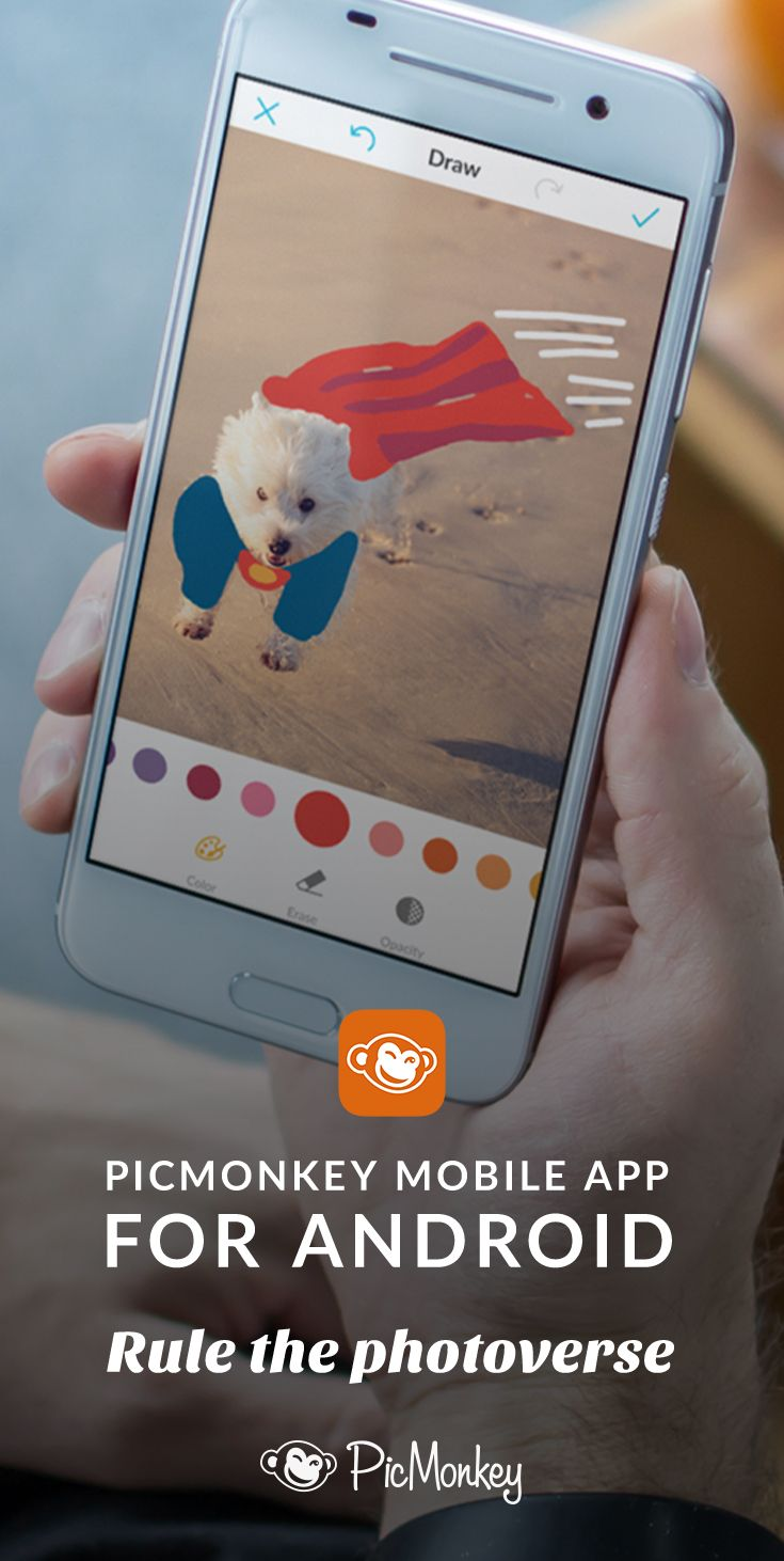picmonkey s mobile app puts the photo effects and tools you love