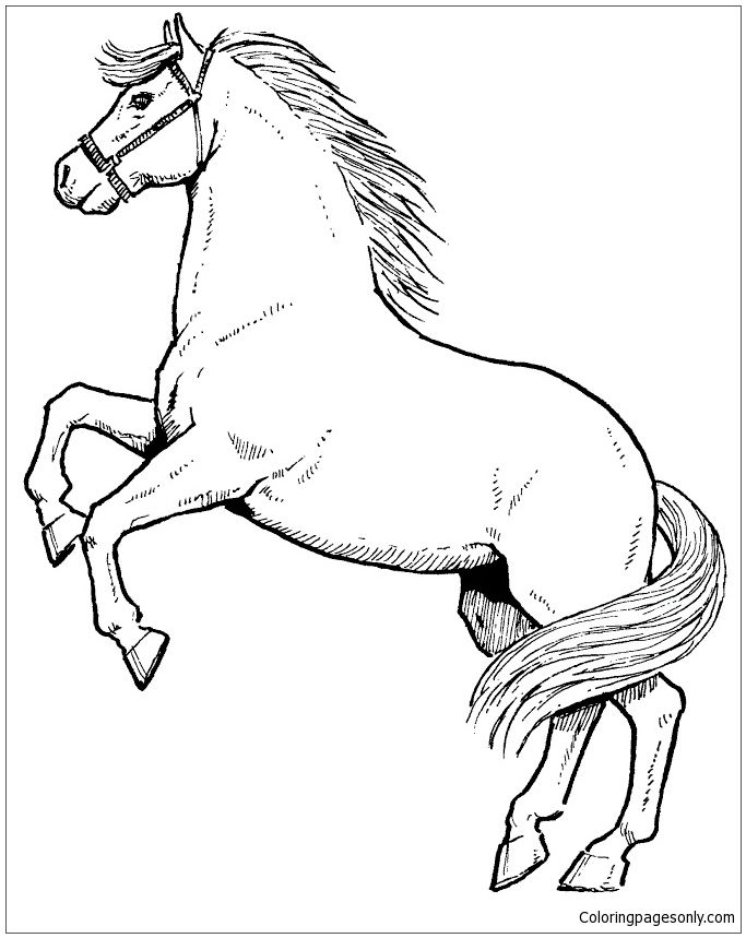 Rearing horse coloring page as you know coloring is essential to the overall development of a child when a child colors it improves fine motor skills