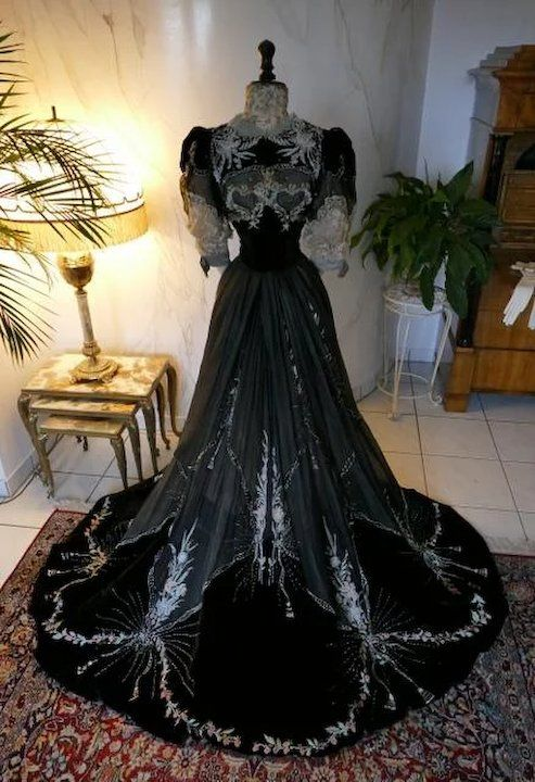 1906 GUSTAVE BEER Antique Reception and Society Dress, antique gown ...