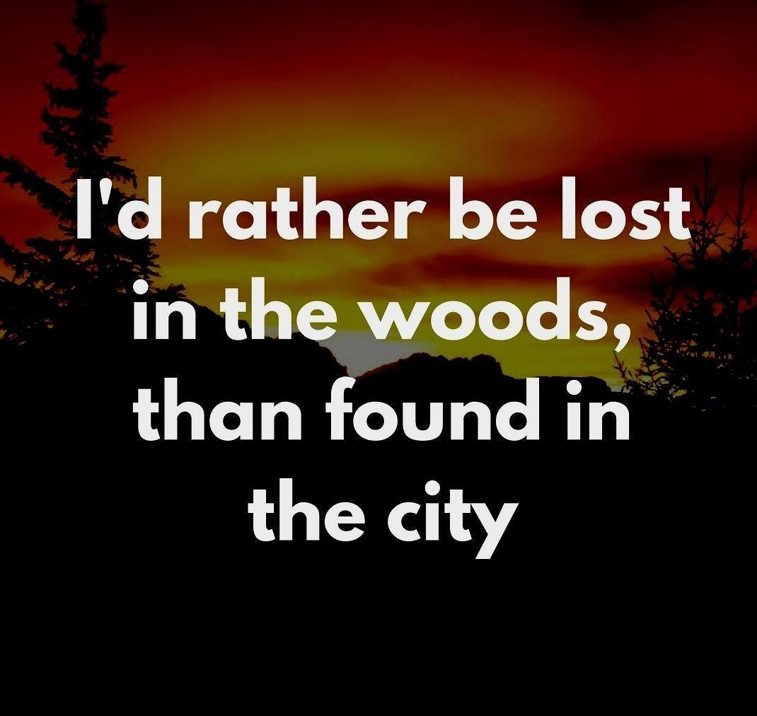 I D Rather Be Lost In The Woods Then Found In The City Into The Woods Quotes Lost In The Woods Hunting Quotes