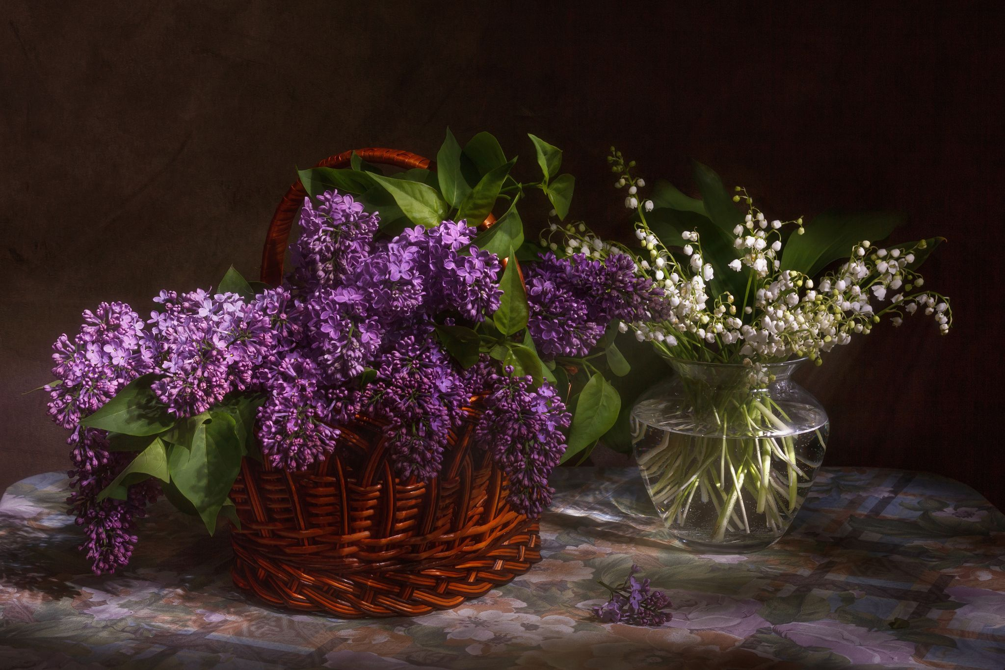 Fragrant May Lilac Bouquet Still Life Flowers Flowers