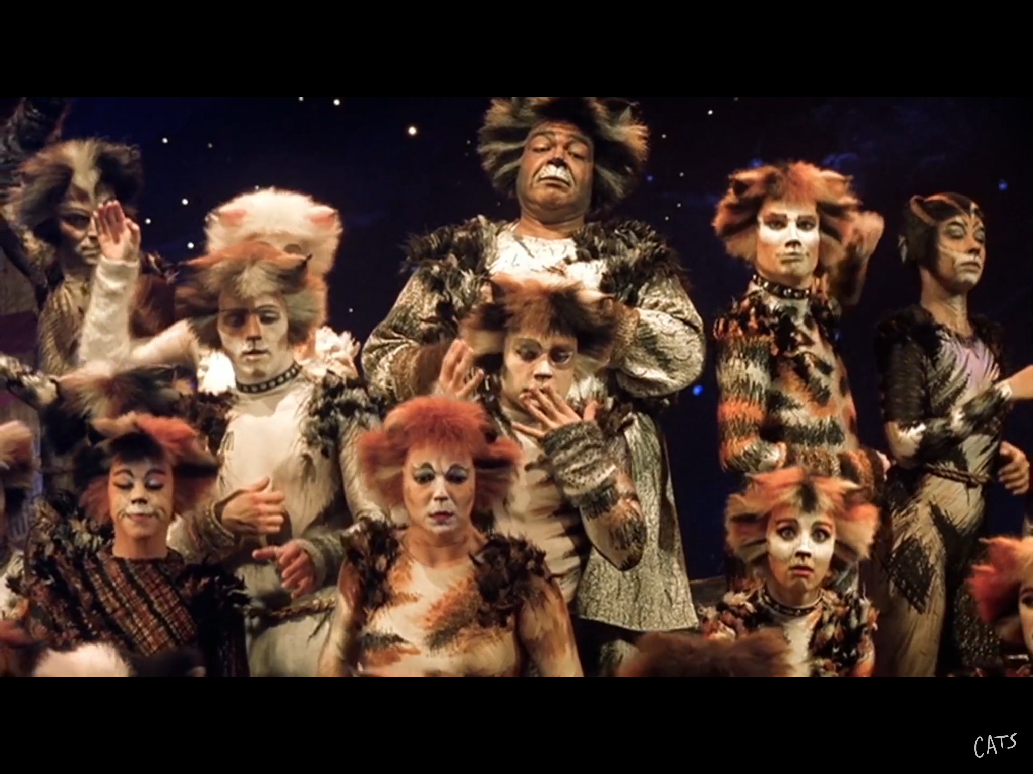 Pin by Martes Pennanti on Cats The Musical Jellicle