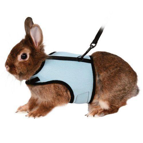Trixie Soft Harness With Lead To Fit : Rabbits, http://www.amazon.com/dp/B001BYJ38Y/ref=cm_sw_r_pi_awdl_XHp6ub0DE9C8W
