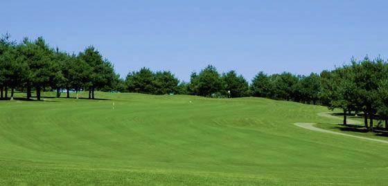 15+ Apple mountain resort golf club viral