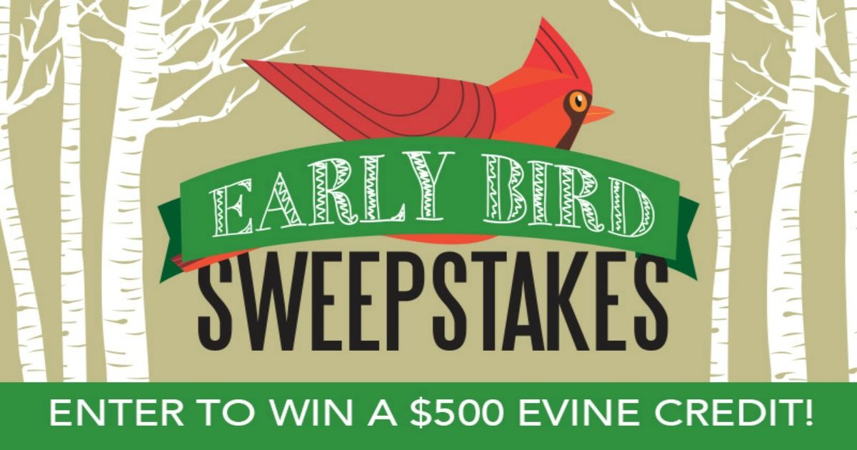 Win a 500 credit with evine early bird sweepstakes