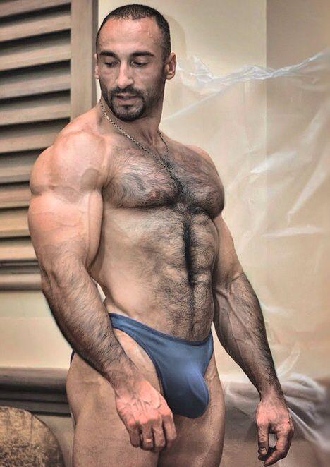 hot bear speedo | bears | pinterest | daddy bear, muscle bear and