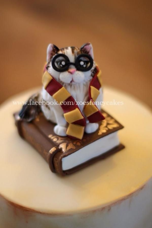 Harry potter cat birthday cake by Zoes Fancy Cakes Cakes Cake