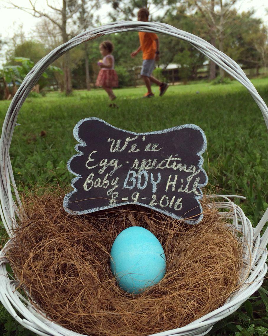 Gender Reveal Easter Egg