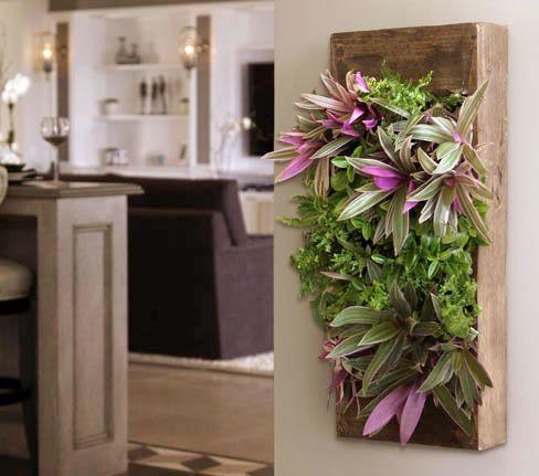 Living Wall Planter grovert wall planter- walnut | living wall planter, living walls