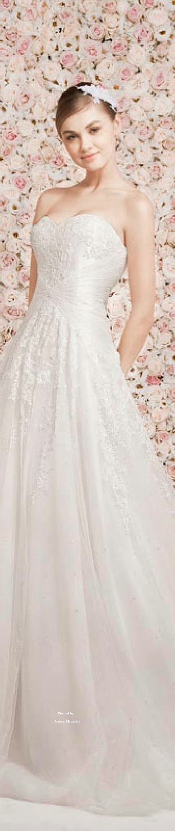 Oved Cohen 2014 Wedding Dresses Collection