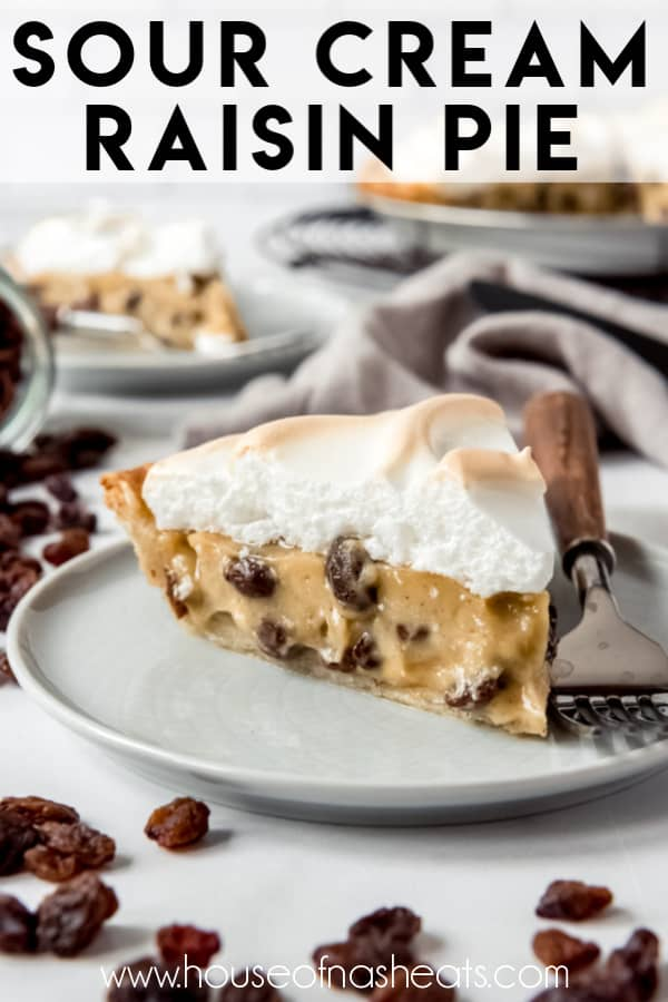 Gently Spiced Custard Filled With Plump Raisins Nestled In A Flaky Pie Crust And Tucked Under A Layer Of Toa In 2020 Raisin Pie Sour Cream Raisin Pie Raisin Pie Recipe