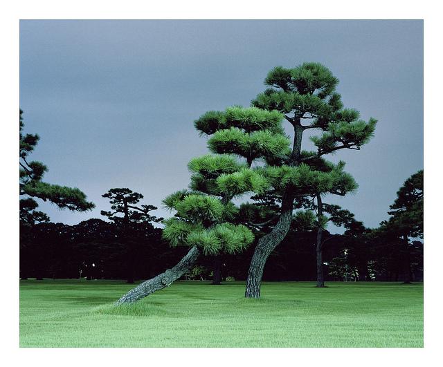 """20aliens: """"Tokyo 2012 by furufull """""""