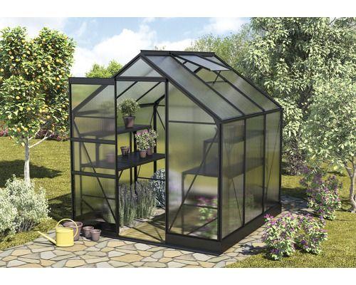 gew chshaus apollo 3800 hohlkammerplatten 6 mm schwarz jetzt kaufen bei hornbach sterreich. Black Bedroom Furniture Sets. Home Design Ideas