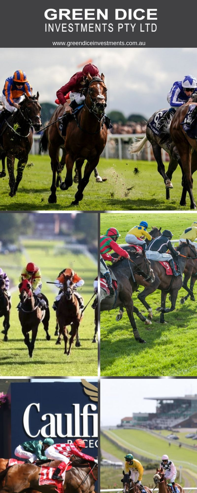 Are you looking the best horse racing tips? We provide these
