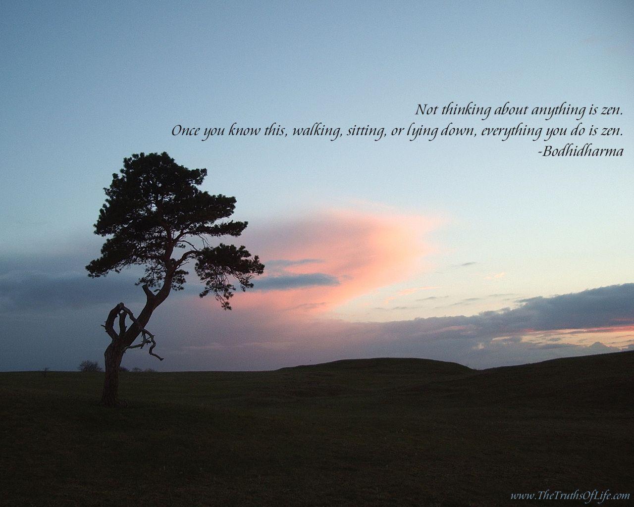 zen quote ........................ | yum---Joan | Pinterest | Zen ...