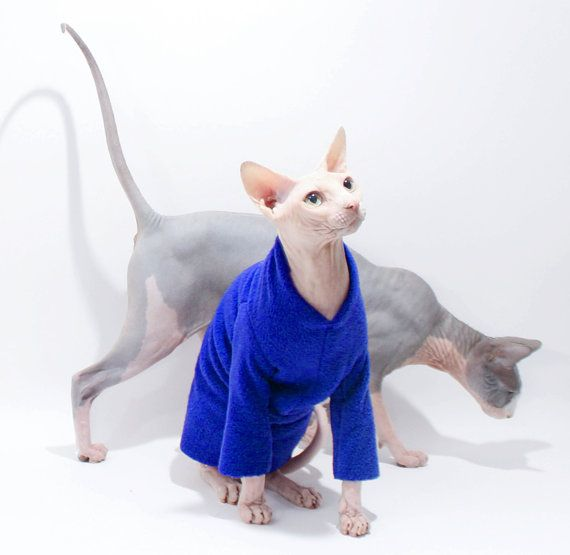 Cat Clothes Long Sleeved Fleece Pajamas Buy Three Get One Free Softest Sphynx Cat Clothes Cat Sweater Long Sleeved Pet Tops 86 By Simplysphynx Catcostum Sfinks