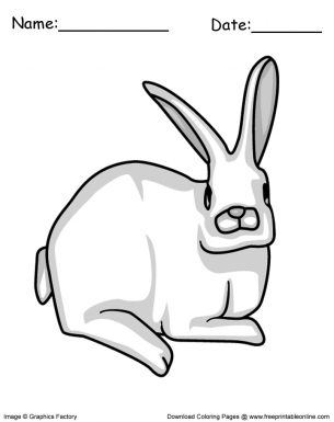 Easter Bunny Rabbit Coloring Page Easter Bunny Rabbit Easter Coloring Pages Coloring Pages