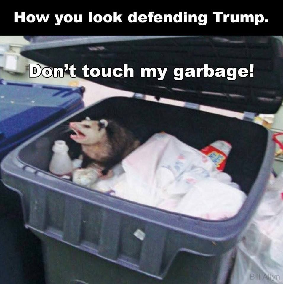 How you look defending Trump. Don't touch my garbage ...