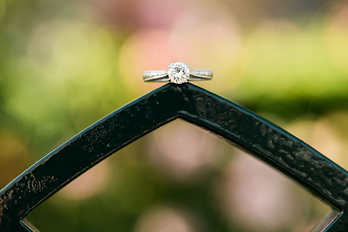 ring on a gate