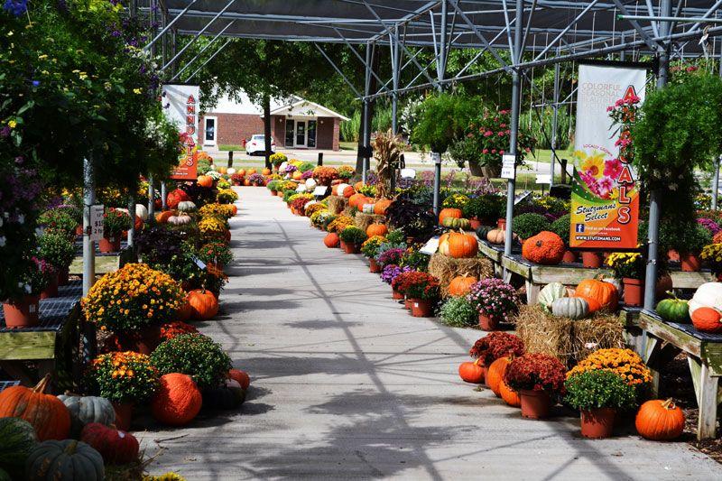 The Walk Of Fall Gorgeous Gardens Garden Center Displays Autumn Display