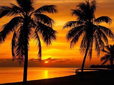Sunset Ocean View-Inspiring