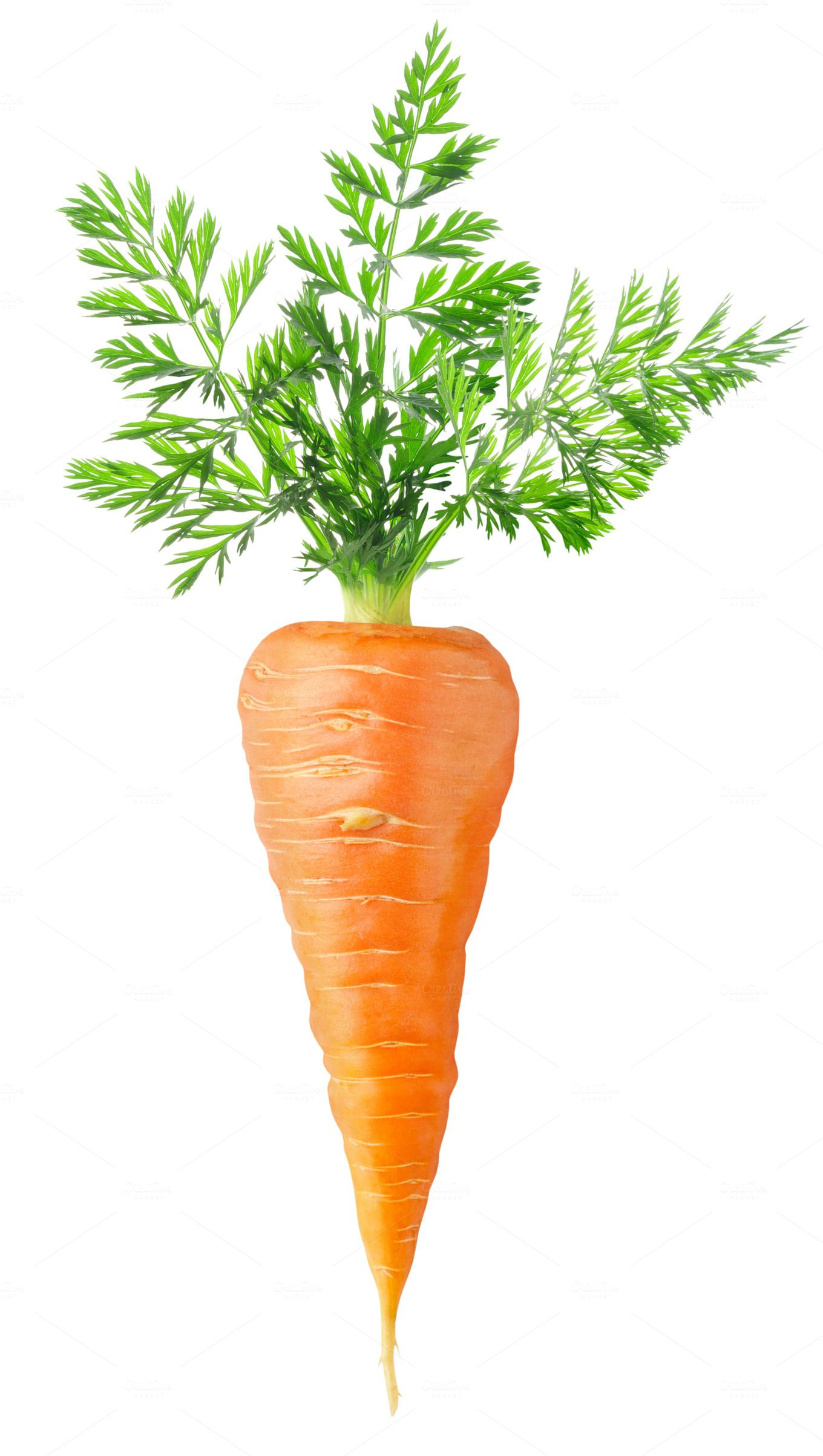 Carrot On Transparent Background By Fruits Veggies On