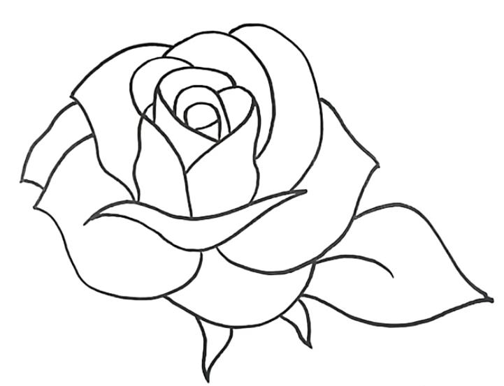 Como Desenhar Uma Rosa Simples Passo A Passo In 2020