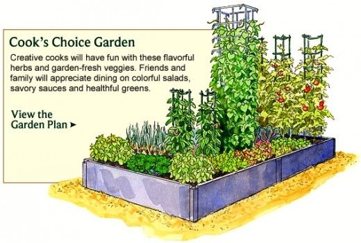 Vegetable Garden Planner   Layout, Design, Plans For Small Home Gardens Nice Look