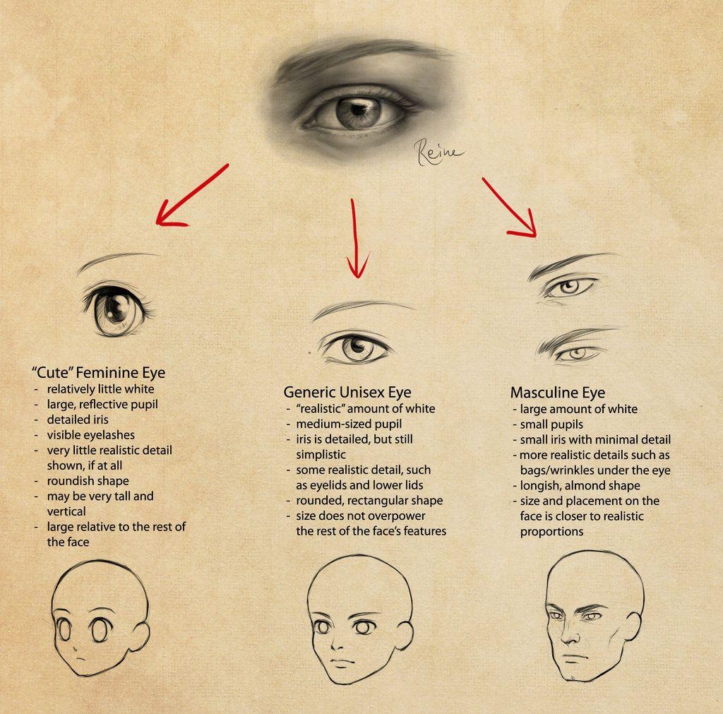 Eyes In Manga Feminine Vs Masculine By Dragonreine On Deviantart Manga Eyes Anime Eyes Eyes