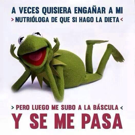 Memes para Adelgazar on Pinterest | Ejercicio, Chistes and Frases