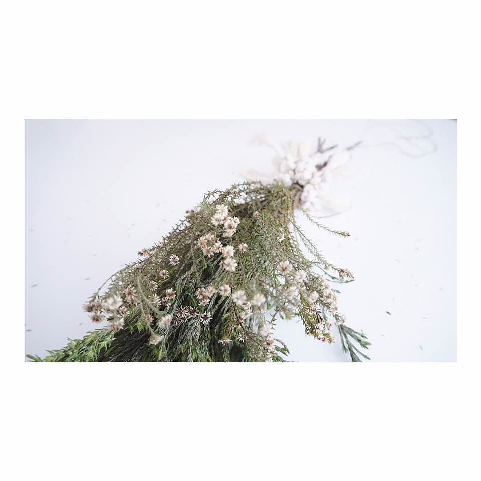 Love flowers by elee . . . . . #flowers #flower #elee #bridesmaid #nature #beautiful #love #pretty #plants #blossom #sopretty #weddinginspiration #flowersofinstagram #flowerstyles_gf #flowerslovers #flowerporn #botanical #floral #florals #insta_pick_blossom #flowermagic #instablooms #bloom #blooms #botanical #floweroftheday