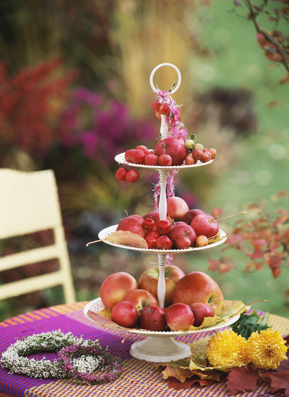 Our Favorite Decor Ideas to Take Your Thanksgiving ...