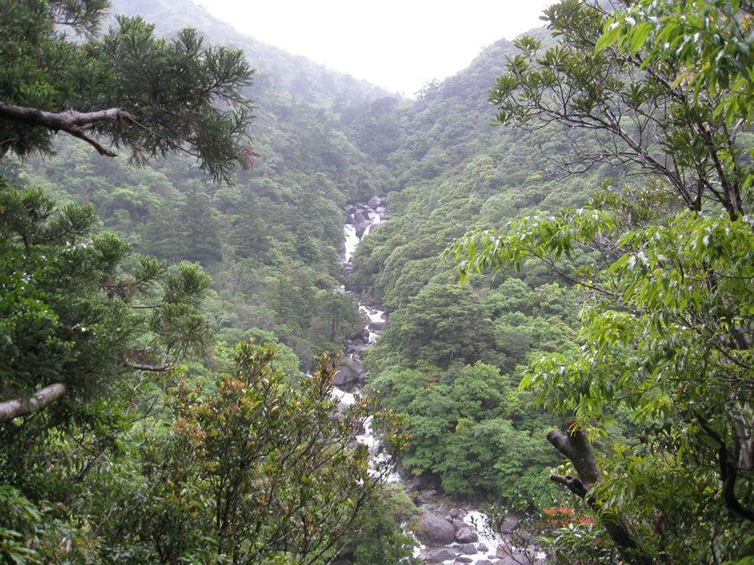 大きな滝。