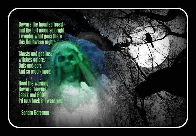 Beware the haunted forest...