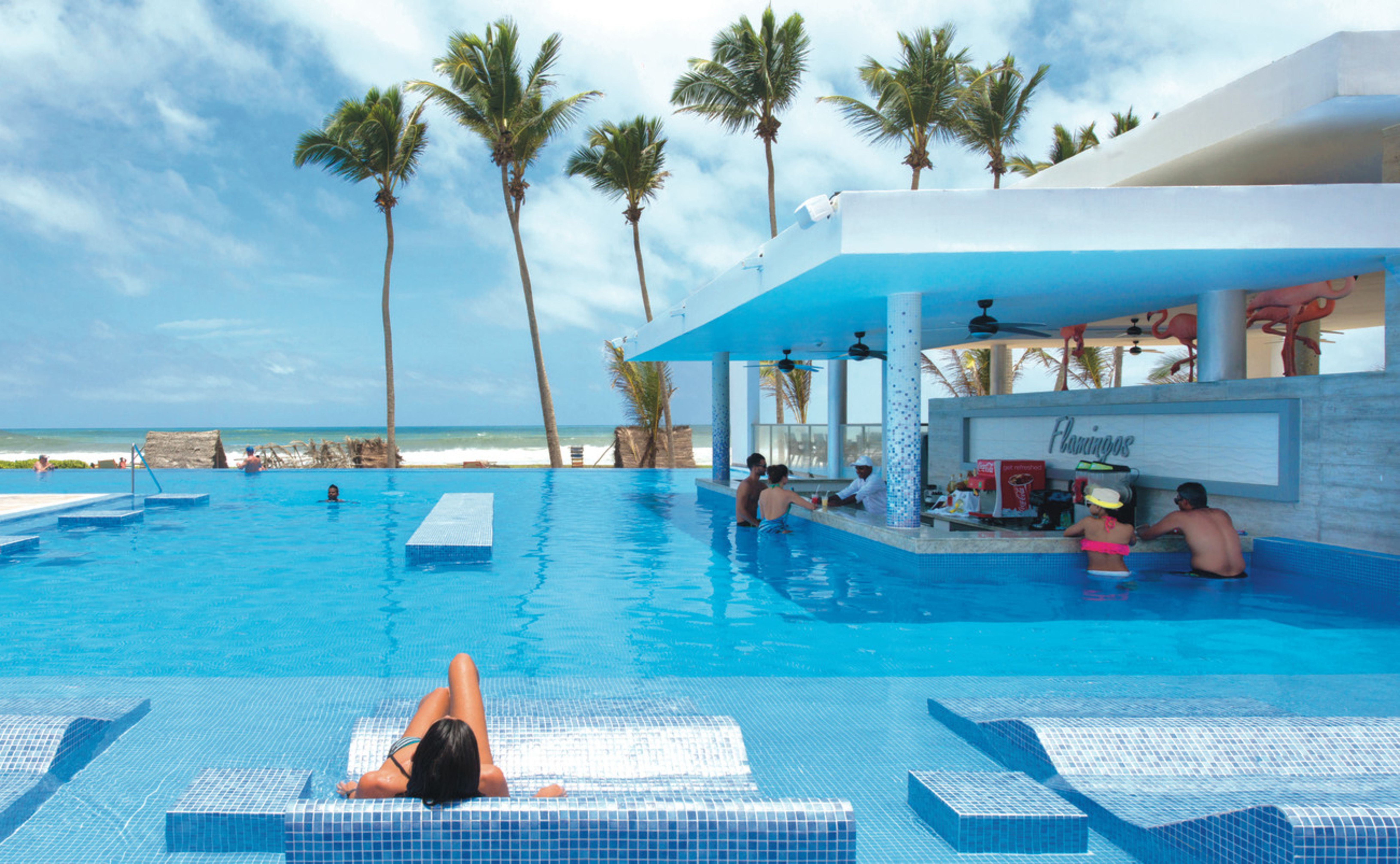 Flamingos Swim Up Bar At Riu Sri Lanka All Inclusive Hotel In Ahungalla Beach Sri Lanka