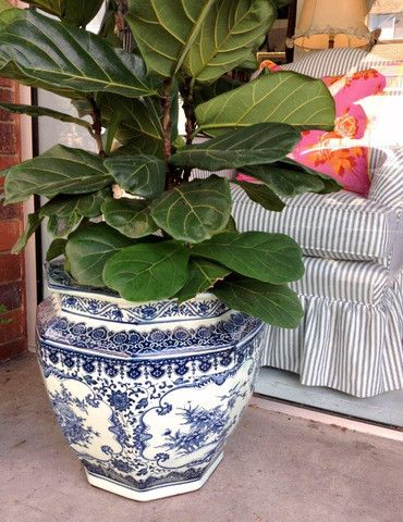 Large Blue White Planters For The Home Pinterest 400 x 300