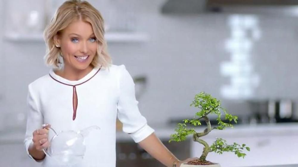 As Kelly Ripa waters a plant, she explains that just like soil is the foundation for healthy plants, gums are the foundation for healthy teeth. Colgate Total Daily Repair toothpaste helps remineralize enamel and fight plaque for healthier gums.