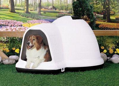 Petmate Indigo Dog House Large Dog House Cool Dog Houses Dog