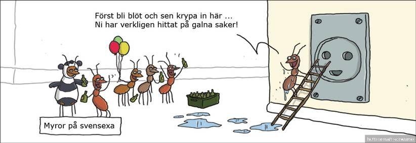 BILDEXTRA: Nya galna strippar – precis varje dag | Klick! | Nöjesbladet | Aftonbladet