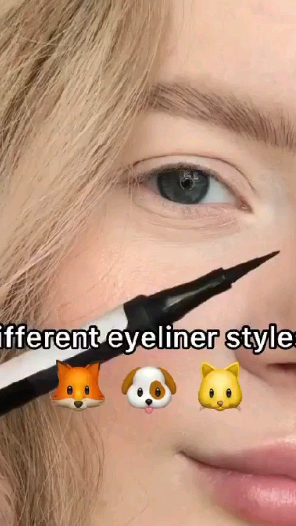 Different eyeliner styles 🦊🐶🐱  Comment your favori