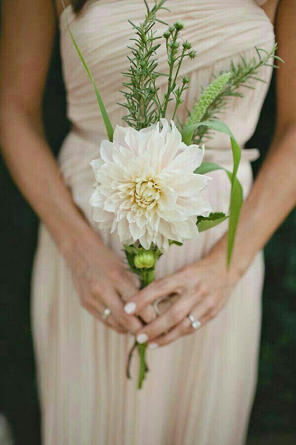 Very Simple Wedding Bouquet Featuring: Cream Dahlia & Fresh Green ...