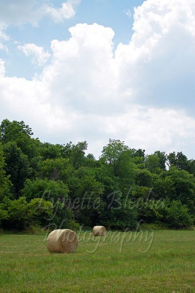 ~Rolling Haybales~  #country #summer #photography #farm #clouds  Lynette Blecha Photography - Lynette Blecha Photography