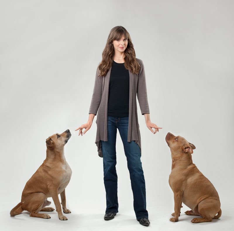 Understanding Pack Behaviour With Victoria Stilwell Dog Biting