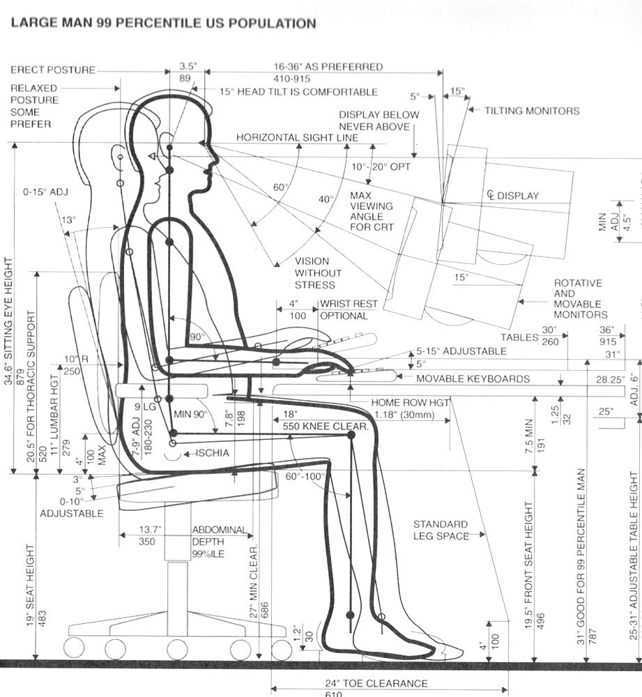 Anthropometrics Is The Data Which Concerns The Dimensions Of Human  # Muebles Domoticos