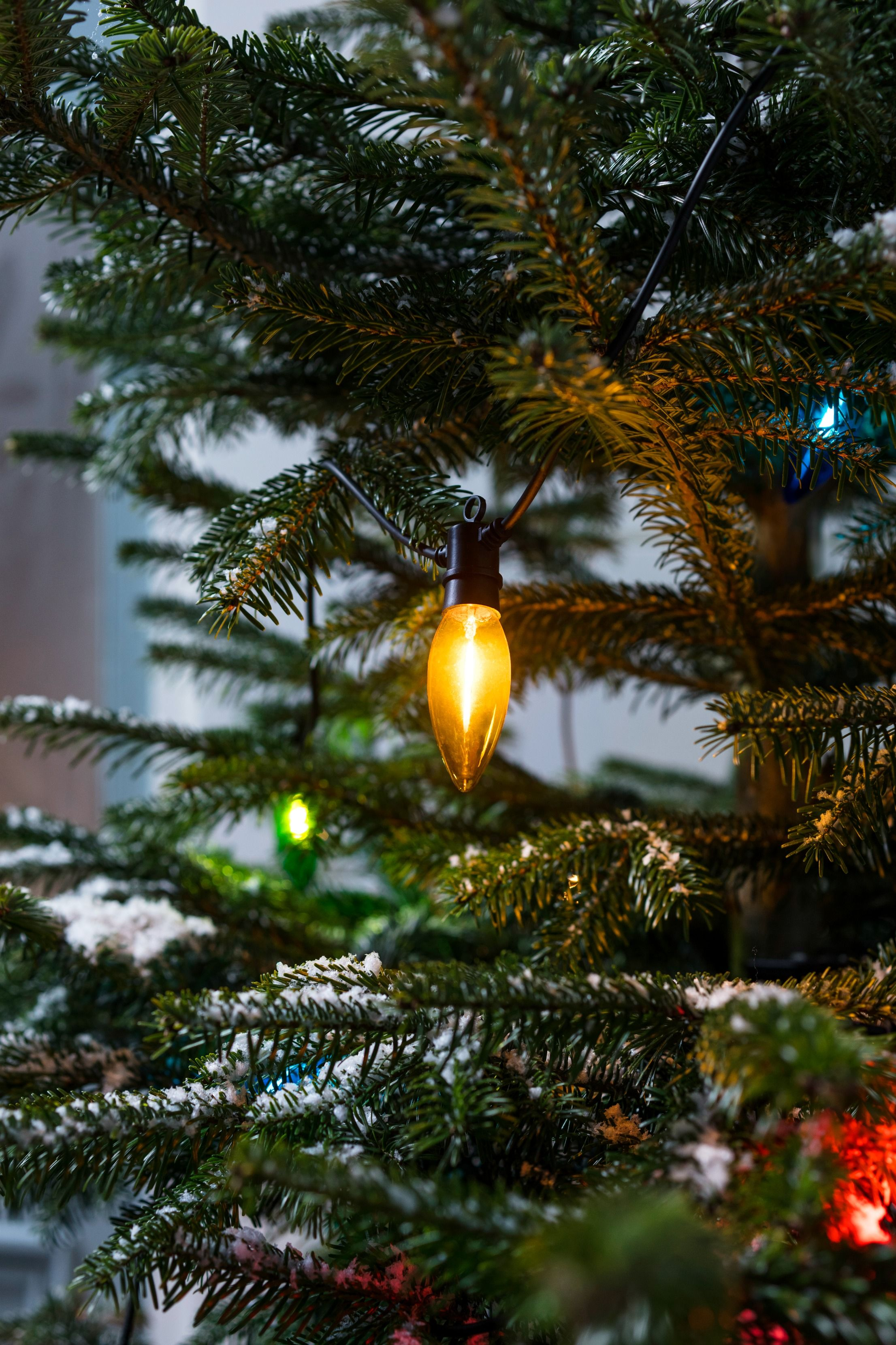 nestled within your christmas tree or decorating the outside of your house our nostalgic multi